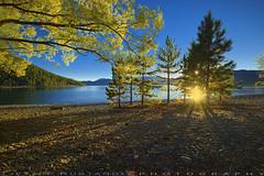 Lake Tekapo early morning (T Ξ Ξ J Ξ) Tags: newzealand laketekapo fujifilm xt1 teeje fujinon1024mmf4 day morning lake tekapo rays lights landscape trees