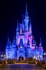 Cinderella Castle Nights (TheTimeTheSpace) Tags: waltdisneyworld disneyworld disney magickingdom cinderellacastle mainstreetusa nights nikond810 nikon7020028 partners