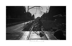 - Paso a Contraluz / Step to Backlight - (-Montxo-) Tags: contraluz bicicletas gente photography film ilford 400 35mm analogo retro street chinon salou tarragona squareformat square españa blanco black bw