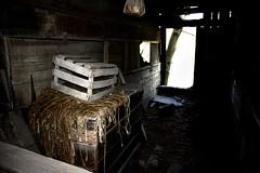 Barn Dark (Branson Rose) Tags: abandoned house barn photography photographer pictureoftheday haunted summervibes summer spring warm adventure fallingapart