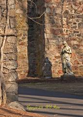 Statue Garden in Old Hay Barn at Duke Farms, Hillsborough, NJ (takegoro) Tags: sculpture art nature statue garden landscape shadows marble sanctuary naturepreserve haybarn dukefarms nj hillsborough