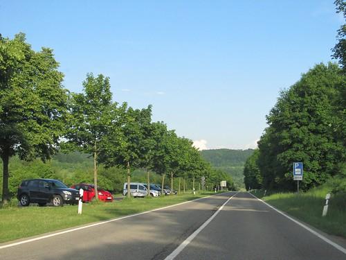 ehem. A8-Trasse am Boßler Mai 2011_002
