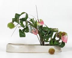 Gauler (Julien Richa) Tags: flower fleur julien maria richa ikebana milena céramique sueli peres moribana morimono depelsenaire