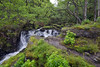 QUIETUDE WITHIN THE LUSH FRONDESCENCE  (5) (DESPITE STRAIGHT LINES) Tags: wood trees green nature leaves rock forest landscape flow scotland highlands woods woodlands nikon flickr raw tranquility foliage gps lush naturalbeauty cascade mothernature lochlomond manfrotto freefall d800 wooded frondescence quietude paulwilliams inversnaid locharklet inversnaidwaterfall nikkor1424mmf28 nikon1424mm nikond800 inversnaidfalls nikongp1 waterfallsinscotland despitestraightlines ilobsterit inversnaidwaterfallsscotland waterfallwaterfallstree thewaterfallsatinversnaid inversnaidfallsscotland scotlandswaterfalls lushfrondescence