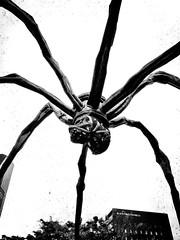 bride of mothra.   (jdx.) Tags: travel urban blackandwhite sculpture art monster japan bronze tokyo spider asia artist contemporaryart modernart