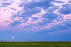 moonrise harvest (Gabriel Carlson) Tags: autumn sunset fall clouds evening moonrise crop northdakota dakota cloudscape redrivervalley