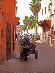 Marrakesh Souks (Mike_fleming) Tags: marrakesh marrachech