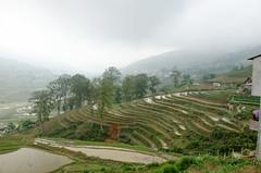Trekking in the Sapa valley