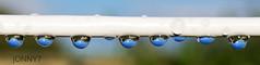 JON71145_edited-2 (dietcokenator) Tags: water droplets pentax k5 washingline