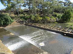 Metropolitan Adelaide (Goyder Institute for Water Research) Tags: bridge water creek marina river waterfall claire metro recycled centre institute convention adelaide glenelg popeye torrens weir gully punter brownhill patawalonga goyder