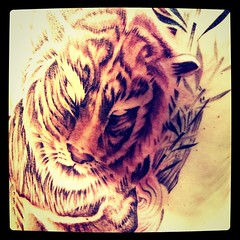 Preview grrr!! (starasian-tattoo) Tags: paris france art tattoo ink square asian design khmer tiger manga tattoos creation squareformat asie tatoos yakuza tatoo tigre artistes japonais inked tattooart artiste asiatique tats tatouage irezumi tattoodesign tatou tatouages japanesetattoo vietnamien tigertattoo asiantattoo thailandais tigretattoo sloft iphoneography starasian instagramapp xproii uploaded:by=instagram starasiantattoo thesloft