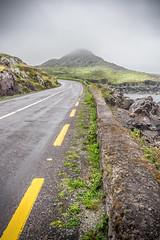 Foggy hill, Brackaharagh, co. Kerry