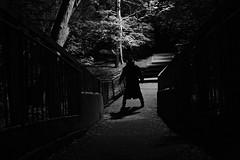 It's watching... It's waiting... It's hungry... (Creepella Gruesome) Tags: bridge trees light blackandwhite night dark evening scary shadows sinister eerie creepy spooky mysterious horror nightmare cinematic filmnoir phantasm theshadowcreep captaincreepy