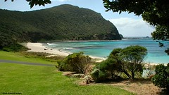 View to Malabar Hill From Neds Beach, Lord Howe Island, NSW, Australia (Black Diamond Images) Tags: beach sand australia nsw lordhoweisland malabarhill worldheritagearea australianbeaches nedsbeach thelastparadise escarpmentcliffs