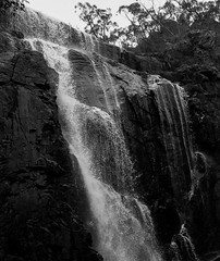 Waterfall - Grampians (stormgirl1960) Tags: park blackandwhite water monochrome forest landscape waterfall rocks grampians victoria falls hallsgap