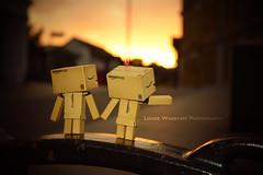 Sweet Little Sunset (loulovesdanbo) Tags: light sunset stilllife cute love character romance danbo danbomini danbophotography