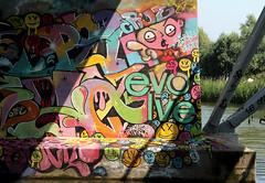 graffiti (wojofoto) Tags: amsterdam graffiti streetart wojofoto hof amsterdamsebrug flevopark nederland netherland holland wolfgangjosten evolve