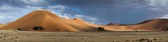 Dune Pano (MrBlackSun) Tags: red panorama nikon dunes dune ripples namibia namib d600 namibdesert naukluft reddune namibnaukluft namibnaukluftnationalpark nikond600 namibnaukluftnp