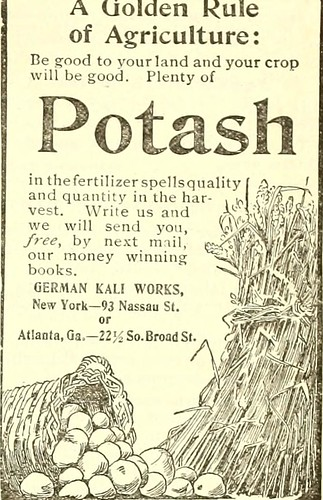"""Image from page 122 of """"North Carolina Christian advocate [serial]"""" (1894)"""