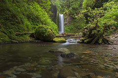 Weisendanger Falls (Joshua Johnston Photography) Tags: green water oregon waterfall hiking columbiagorge larchmountain weisendangerfalls hikingoregon canon6d canon24mm28is
