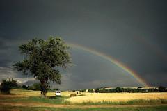 Kaum zu glauben ... (alf sigaro) Tags: regenbogen rainbow safeshot einwegkamera disposablecamera disposablecameras toycamera singleusecamera