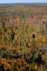 From the Hovland Fire Tower (gtkenji) Tags: autumn minnesota fallcolors northshore lakesuperior firetower hovland fallcolours arrowheadtrail grandportagestateforest
