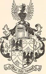 Anglų lietuvių žodynas. Žodis aloyse reiškia <li>aliuzis</li> lietuviškai.