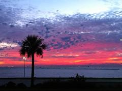 Amanecer en Corpus Christi.  Sunrise in Corpus Christi, Texas (Patzcuaro) Tags: morning beach christi corpus
