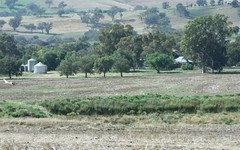 Glenville Pinemount Road, Cowra NSW