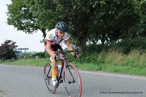 Geel Oosterlo  (136)