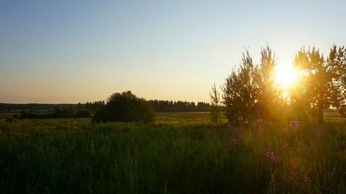 Amber sunset
