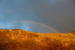 IMG_0913 (Psalm 19:1 Photography) Tags: hawaii oahu diamond head polynesian cultural center waikiki haleiwa laie waimea valley falls