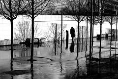 The man who meditated (pascalcolin1) Tags: paris13 austerlitz homme man pluie rain reflection arbres trees ombres shadows lumière light photoderue streetview urbanarte noiretblanc blackandwhite photopascalcolin