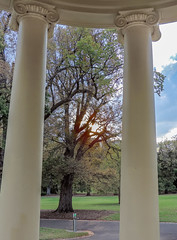 Fitzroy Gardens - OLD ROTUNDA CORINTHIAN CAPITALS ( #89 in series )   15Apr2015  Melbourne AU (JAYKAY144) Tags: autumn weather cloudy capitals columns bright april fitzroygardens melbourne australia oldrotunda 1873 thomasjulianco sunset lawns grass trees light flares