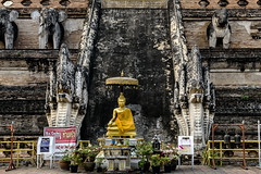 The Small Golden Buddha and the Grand Staircase at Wat Chedi Luang (Anoop Negi) Tags: thailand chiangmai wat chedi luang monument site temple tower buddhist gauram buddha unesco restoration photo photography anoop negi ezee123