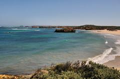 DSC_7067 (Tim Beach) Tags: great ocean road melbourne victoria australia port fairy twelve 12 apostles princetown apollo bay beach sea water bird animal