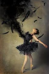 Dark Swan Song (HOtography by Simon Ho) Tags: odile swanlake swan lake feathers smoke death dying swansong blackswan ballet ballerina dancer tutu