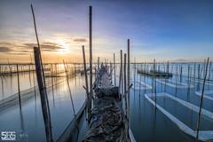 ANOTHER DAY (jopetsy) Tags: alabang muntinlupa philippines sunrise fish boat landscape landscapes seascape seascapes lake bridge log