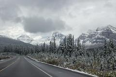 IMG_9776 (RosieNiawm) Tags: canada alberta banff icefieldsparkway vermillionlakes