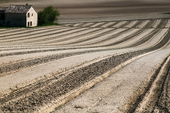sillons (ingridsavary) Tags: nature landscape france travel graphisme graphic provence champs rayures