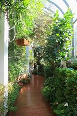 Key West (Florida) Trip 2016 2083Rif 4x6 (edgarandron - Busy!) Tags: florida keys floridakeys butterflyhouse keywestbutterflyandnatureconservatory