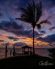Florida Life: Dock Of The Bay (Thūncher Photography) Tags: sony a7r2 sonya7r2 ilce7rm2 zeissfe1635mmf4zaoss fx fullframe scenic landscape waterscape nature outdoors sky clouds colors shadows silhouettes sunrise tropical pier palmtree jensenbeach stuart martincountyfloridasoutheast floridaindian river