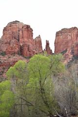 Cathedral Rock (James M. Watts) Tags: cathedralrock sedona