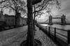 Tower of London and Tower Bridge (Derwisz) Tags: london towerbridge toweroflondon bridge castle thetower thames riverbank river trees promenade england uk unitedkingdom canon eos40d canoneos40d hdr blackwhite bw buildings architecture historicbuildings