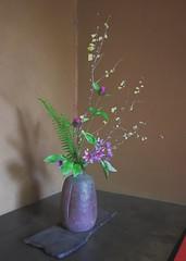 Untitled (Costa Rica Bill) Tags: japan ikebana art flower iphone vsco