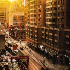 Golden city (-liyen-) Tags: goldenhour sunset urban city street toronto ontario canada bestofweek1 bestofweek2 bestofweek3 bestofweek4 bestofweek5 bestofweek6 bestofweek7 challengeyouwinner cyunanimous mpt536 matchpointwinner matchpointchampion
