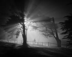 Night Runner (Scott Baldock) Tags: street photography monochrome bw fog mist night lone figure