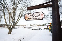 Saloon this way! // Winter Snow Cold Temperature Tree Bare Tree Tree Trunk Nature Outdoors Day No People Beauty In Nature at Chena Pump Bike Path (spieri_sf) Tags: winter snow coldtemperature tree baretree treetrunk nature outdoors day nopeople beautyinnature
