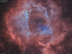 NGC2244_Bi-Colour_2017-1-26 (MarkLB57) Tags: ngc2237 ngc2244 astronomy astrophotography azeq6gt zwoasi1600mmcool zwoefwelectricfliterwheel nebula monoceros bicolour ha oiii meade6000115mmrefractor marklb57 rosettenebula