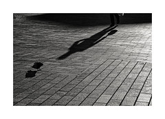 ... (ángel mateo) Tags: ángelmartínmateo ángelmateo cáceres plazamayordecáceres sombra mujer soledad paloma luz shadow woman loneliness light dove blancoynegro monocromo blackandwhite monochrome